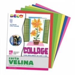 FOGLI ALBUM VELINA COLORATA 24x34   -706/24-  24fogli