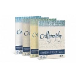 Biglietti Regalo CALLIGRAPHY  Carta Pergamena 90gr - CARTA A4 conf.50ff - NOCCIOLA